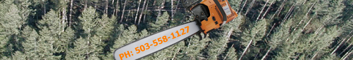 tree services trimming cutting logging chipping oregon